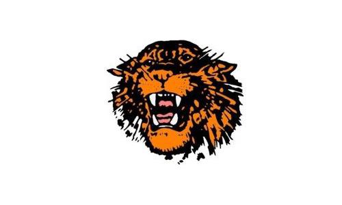 Stratford Tigers Mascot